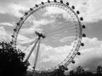 London Eye. London, England. Photo by Lauren Keim